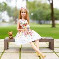 Игра MATTEL Кукла Barbie Коллекционная прогулка в парке и  Шикарный бассейн (DVP54)