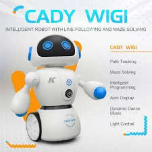Робот Cady Wigi wireless (9484765)