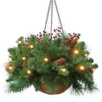 Royal Christmas  HANG  Basket(50sm)