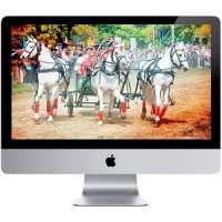 Настольный ПК Apple iMac 096